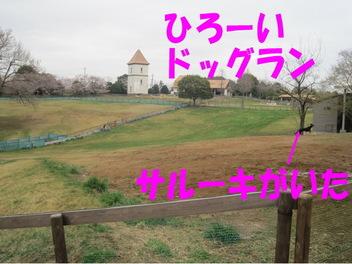 Img_0656_1