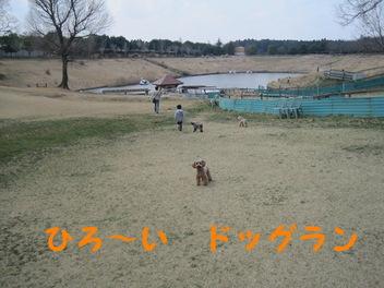 Img_2972_1